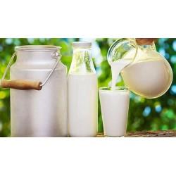 TPA DX Milk 100ml